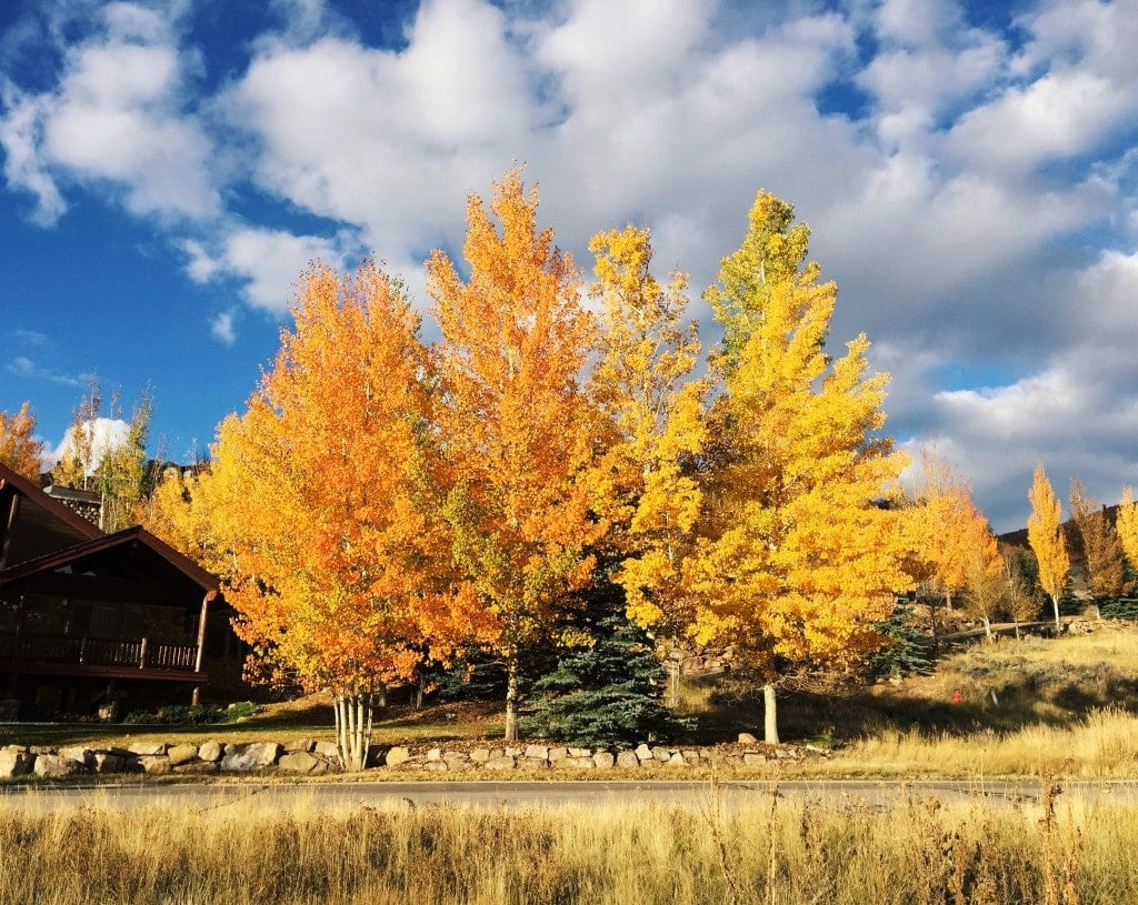 Better Blog Retreat in Deer Valley, Utah