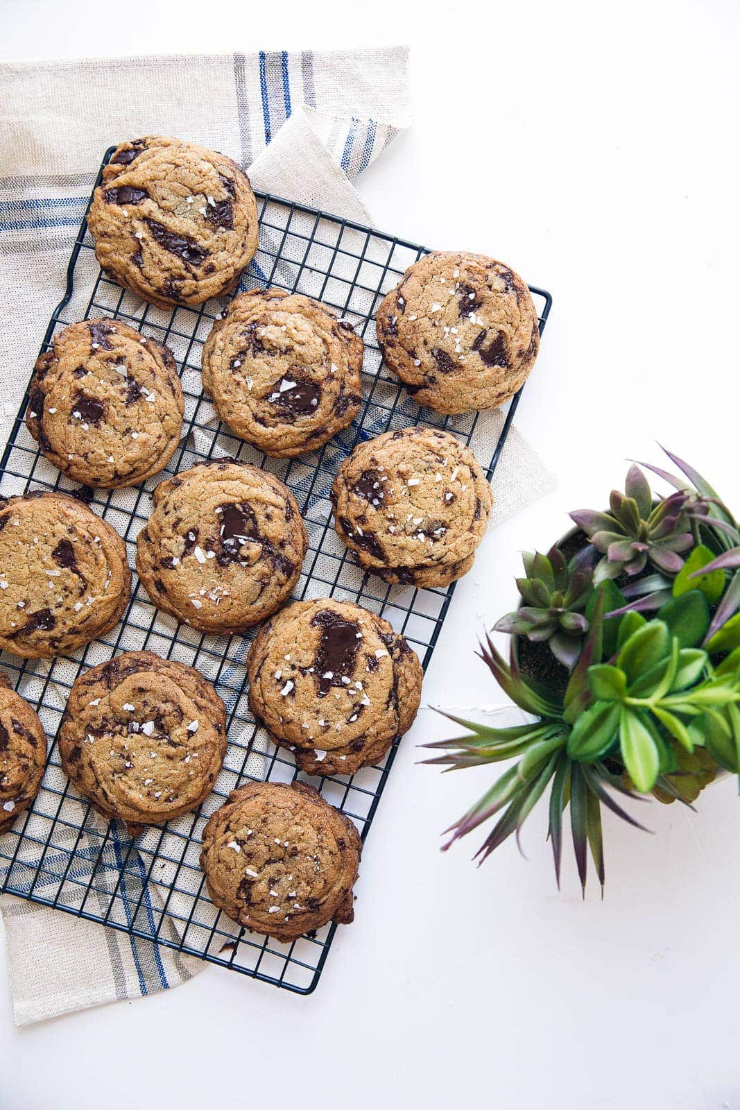 Keeping things classy with olive oil chocolate chip cookies, loaded with huge chunks of dark chocolate and sea salt!