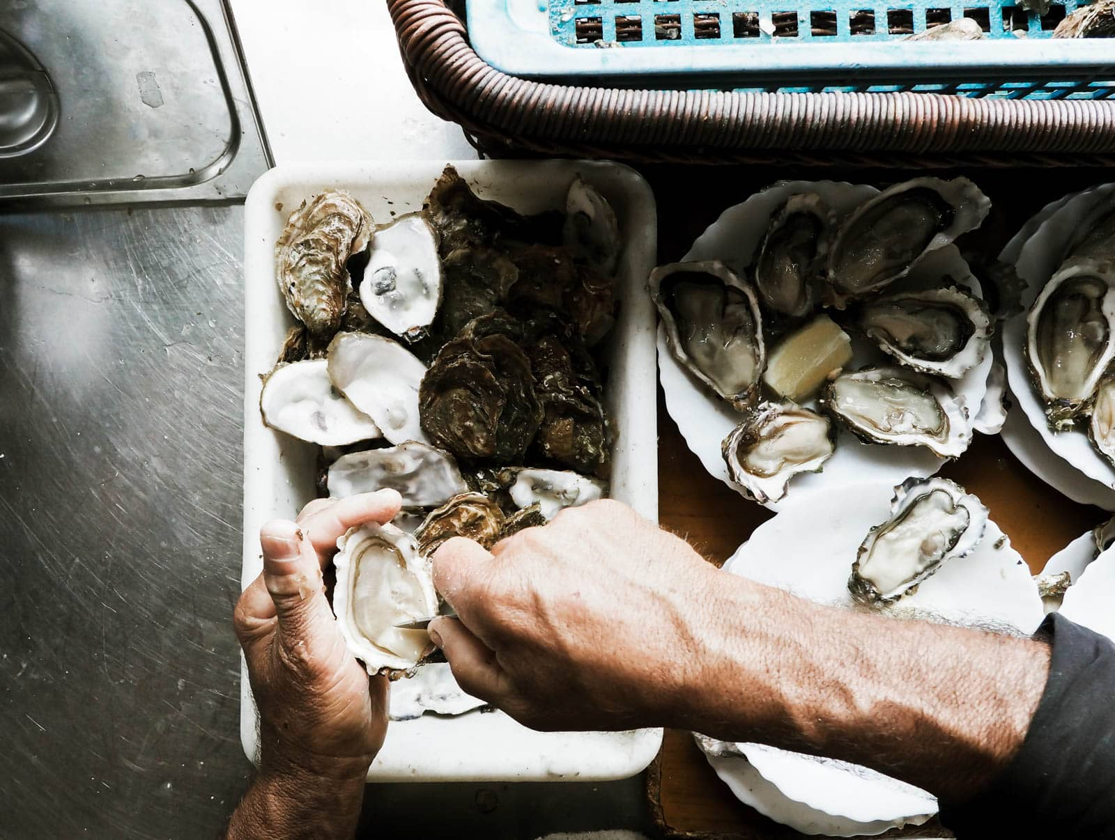 Marennes Oysters