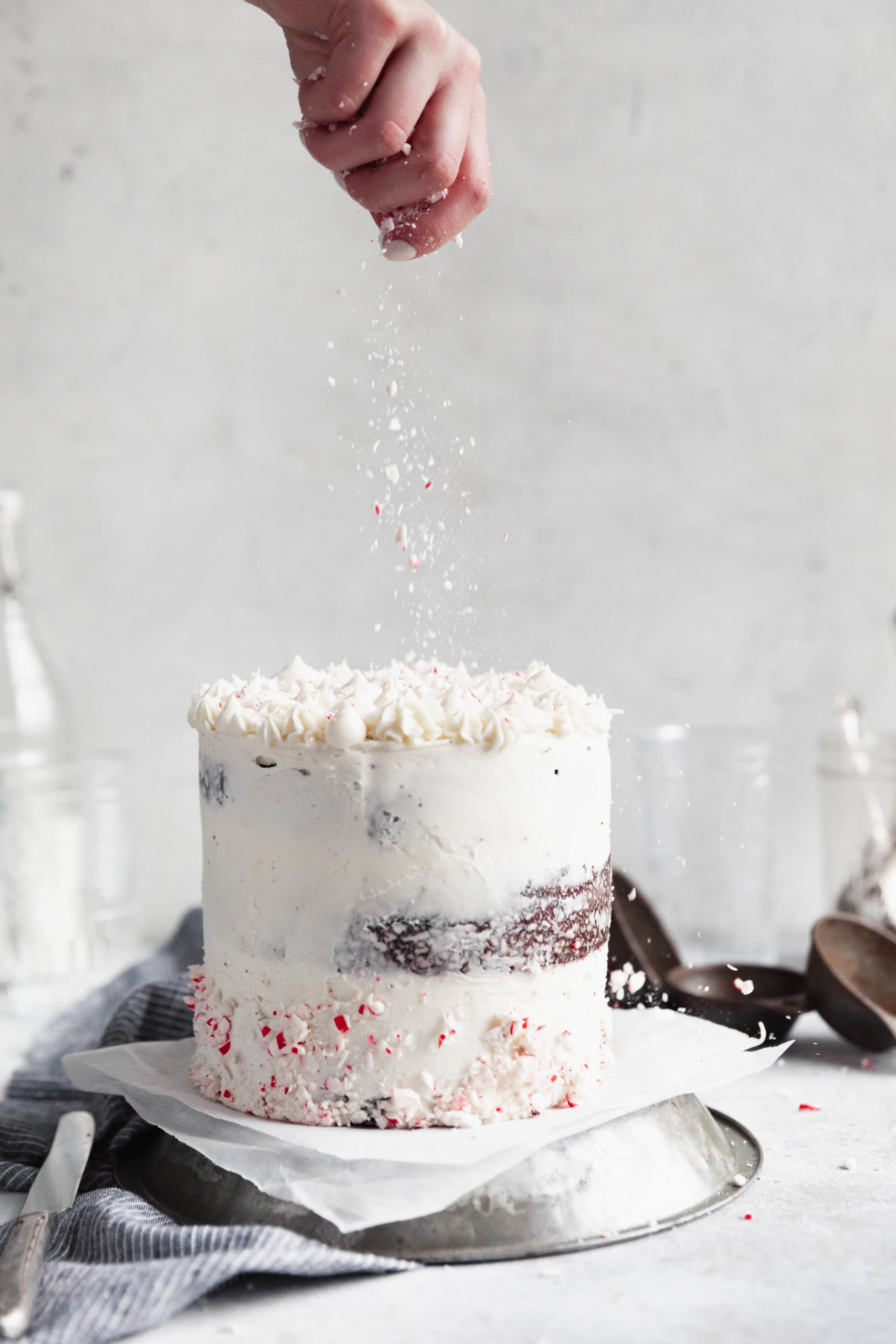 peppermint chocolate cake with sprinkle of peppermint on top