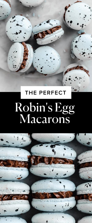 Robin's Egg Spring Macarons
