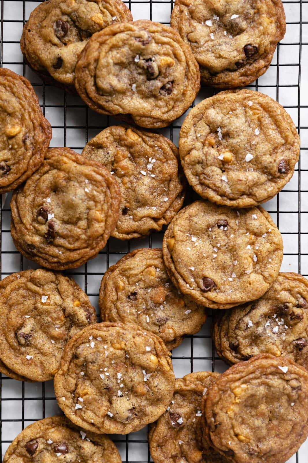 butterscotch chocolate chip cookies on a cookie sheet